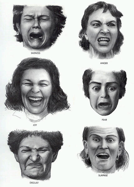 Emotions Chart With Faces. Fred recognizes emotions -